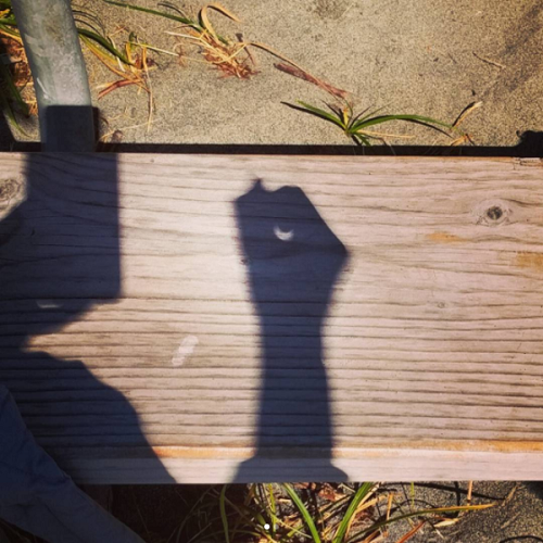 We made pinhole cameras with our hands, revealing a crescent-shaped shadow.